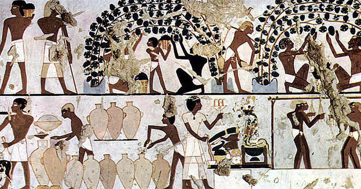 role and importance of transportation in ancient egyptians lives The gift of the nile: part 1: analyzing documents and primary sources what role did geography play in the everyday life important to ancient egyptians everyday.
